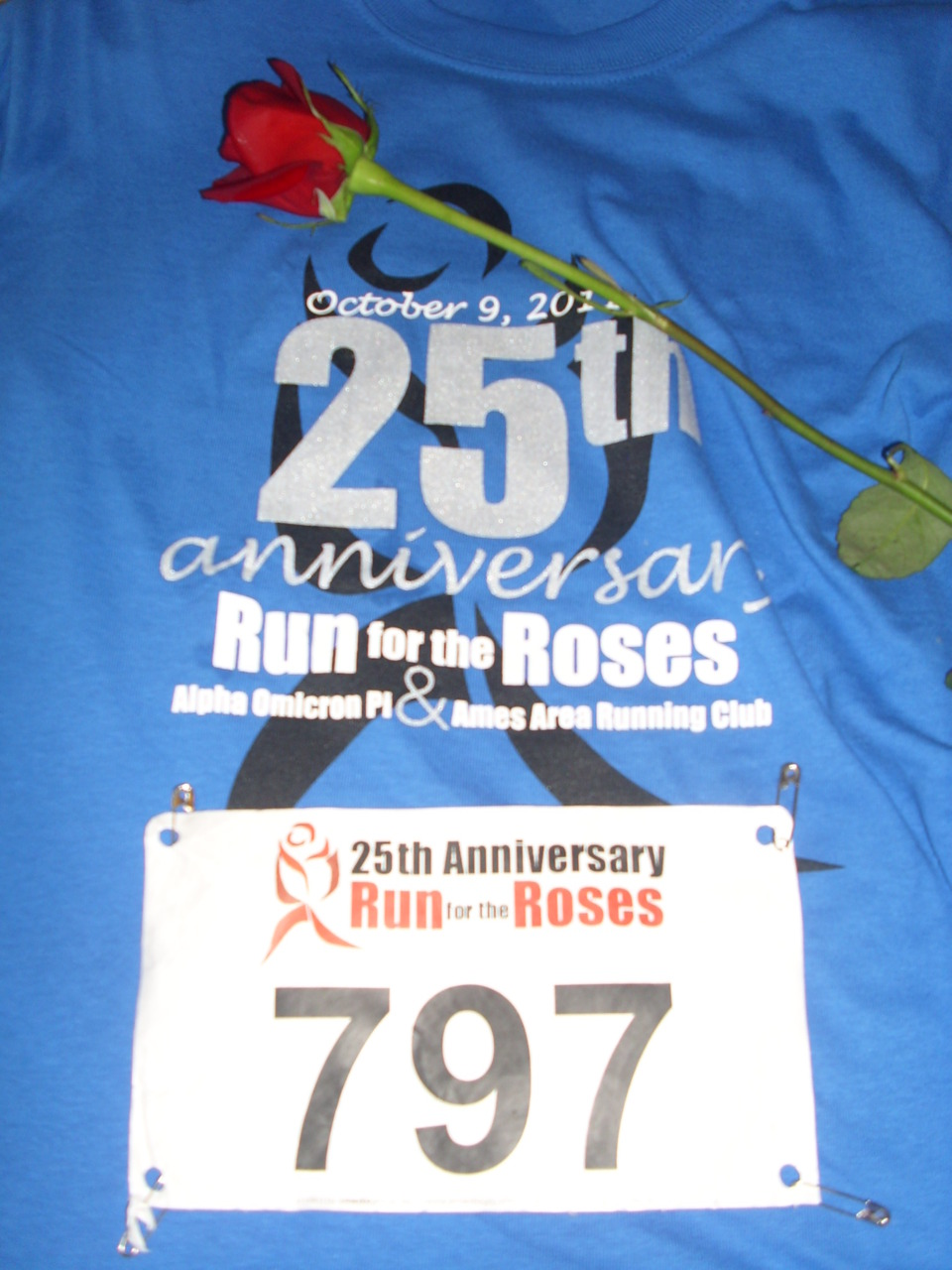 Obsession: Run for theRoses